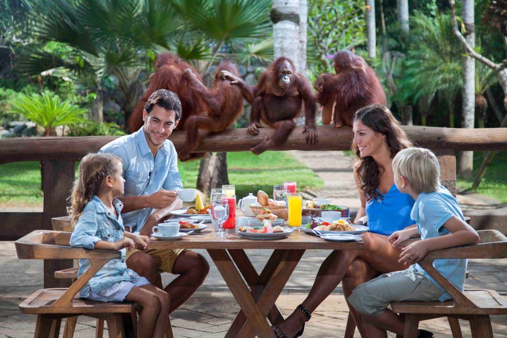 1 Breakfast with Orangutan (1) oni hoironi copy