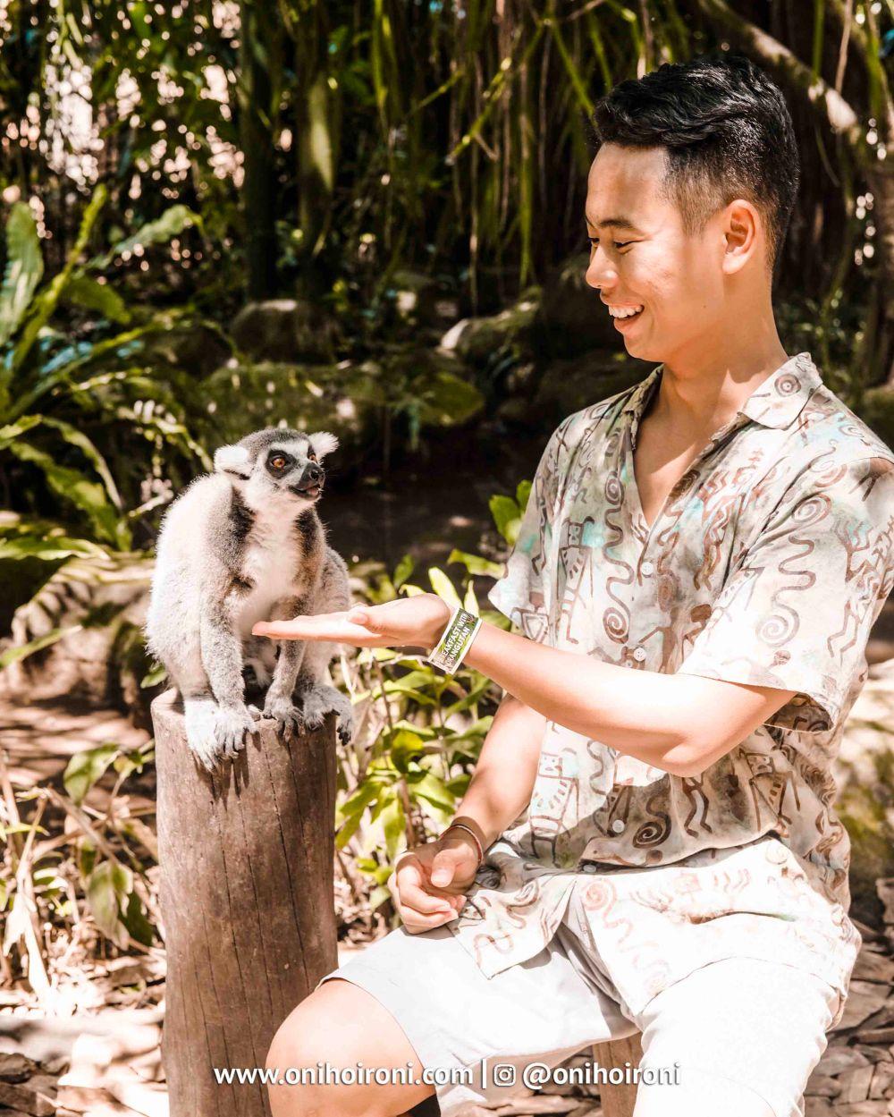 9 Bali Zoo Oni Hoironi Elephant mud fun