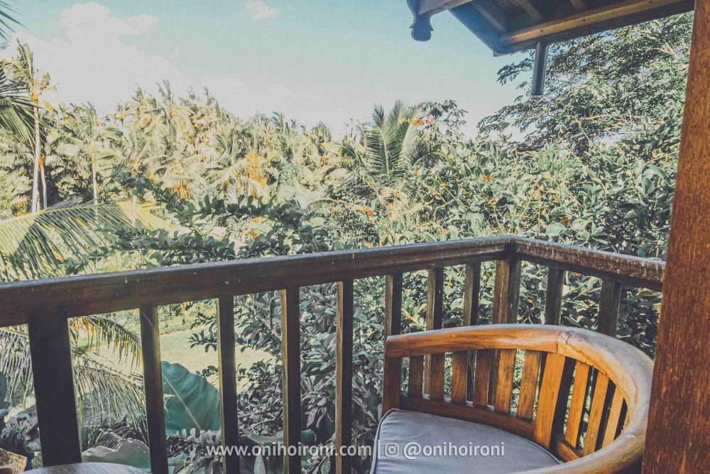 1 review room 3 Mother ship house bali oni hoironi